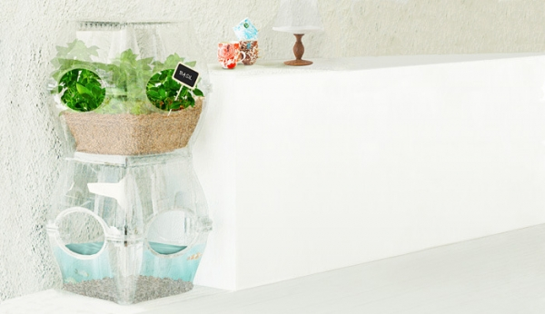 The Aqualibrium is a new take on aquaponics.