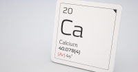 Calcium does a plant body good!
